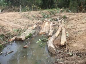 Impacto Ambiental del Oleoducto Bicentenario